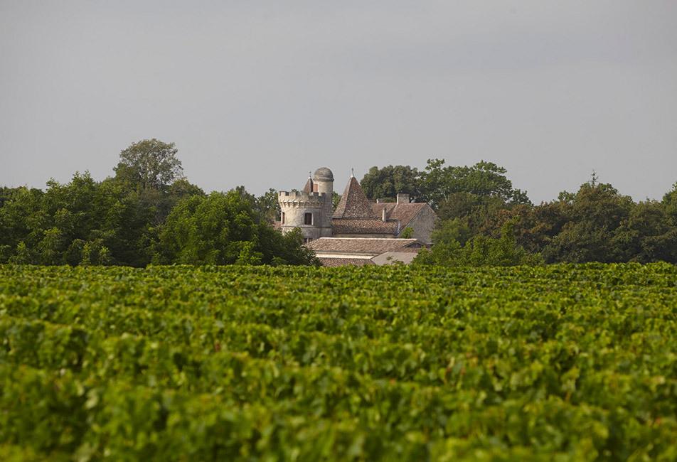 Château Haut La Pierrière